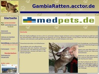 Gambiaratten  Riesenhamsterratten